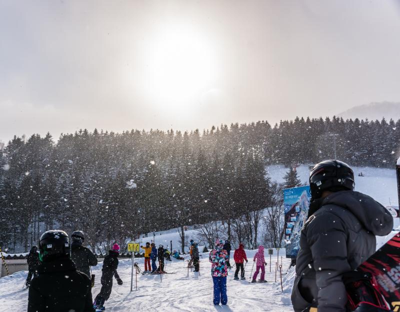 Ski Lodge Niseko